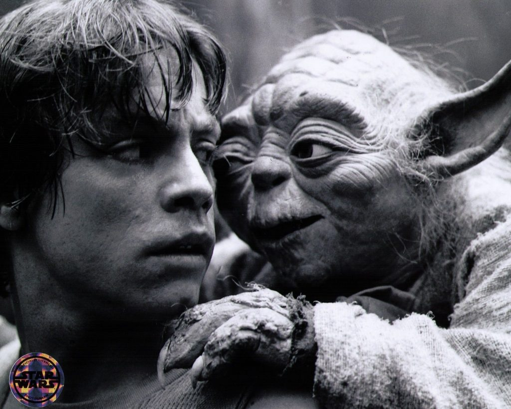 Luke and Yoda in the Empire Strikes Back