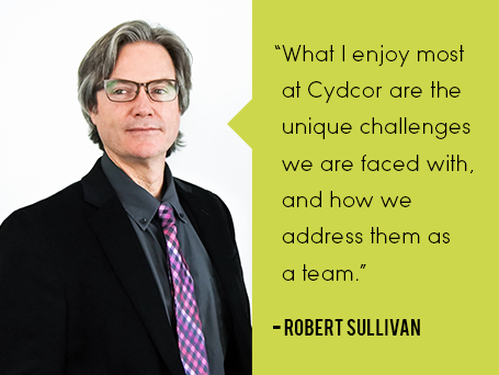 Robert Sullivan quote